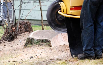 rated Marlow Bottom tree stump removal companies