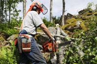 Marlow Bottom tree removal services