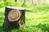 Marlow Bottom tree stump removal services