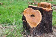 free Marlow Bottom tree stump removal quotes